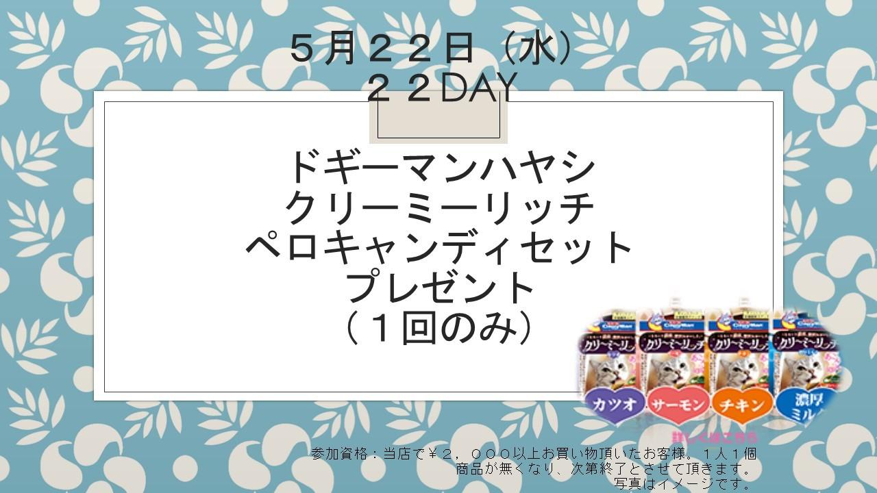 190515 22DAY イベント告知_e0181866_16081608.jpg