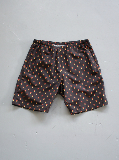 NEEDLES Swim Short - Nylon Tussore_b0139281_1425354.jpg