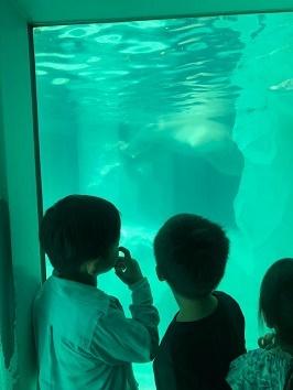 上野動物園_f0153418_17272633.jpg