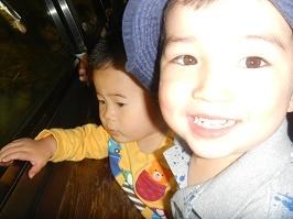 上野動物園_f0153418_17275766.jpg