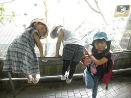 上野動物園_f0153418_17280943.jpg
