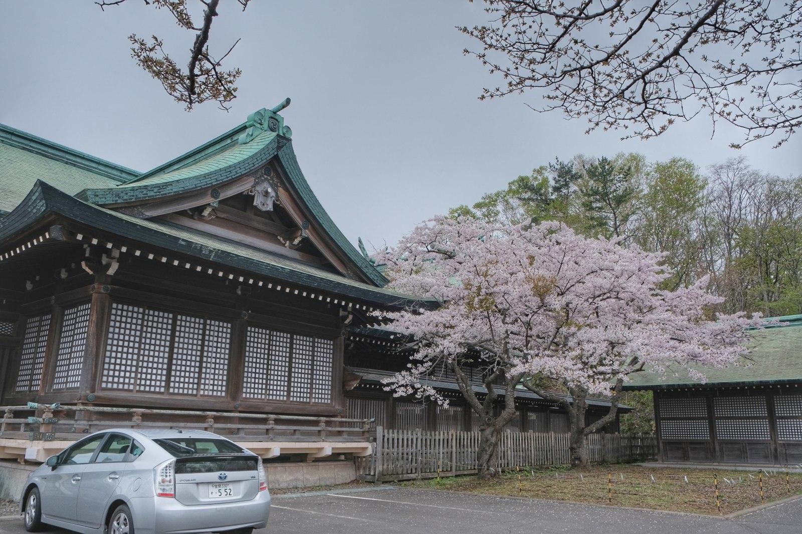 GW帰省8 ~ 室蘭みたら、室蘭八幡宮、視界ゼロの測量山、札幌に住むのありかも~_b0024832_01325532.jpg