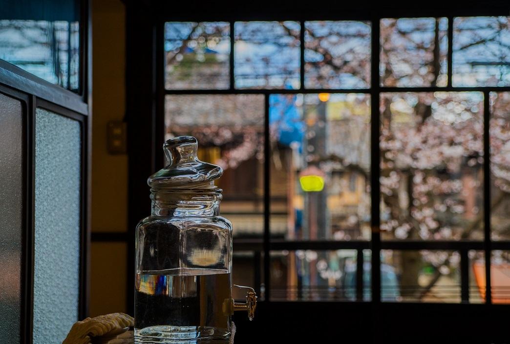 圧倒的桜。平成FINAL_e0363038_14214695.jpg