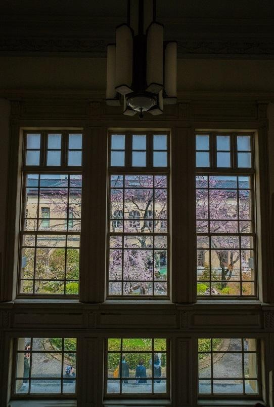 圧倒的桜。平成FINAL_e0363038_14215030.jpg