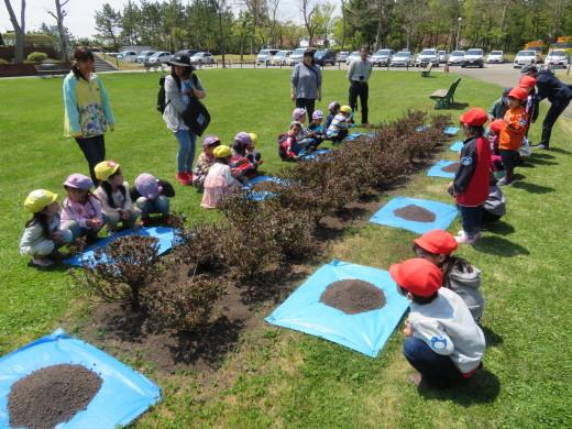 市民の森ブログ 植樹祭の様子_e0145841_19521389.jpg