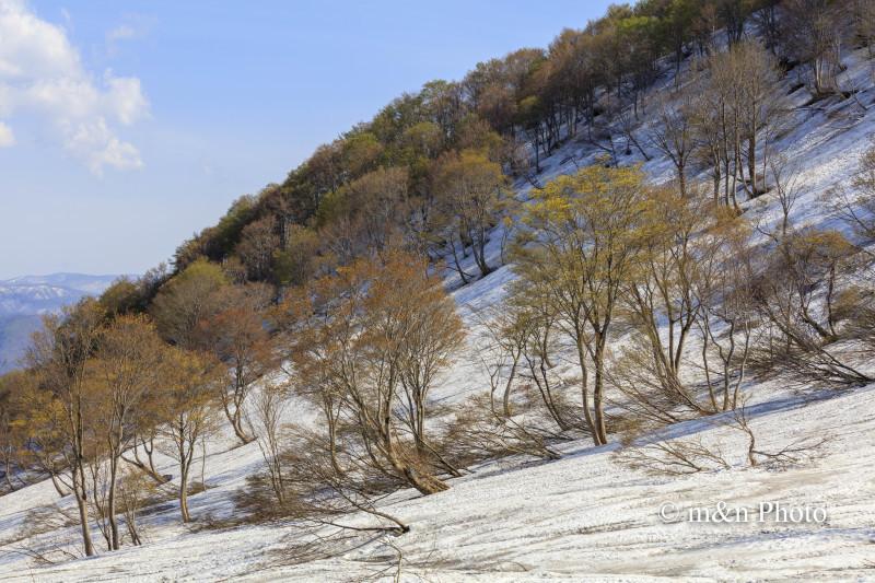 残雪の山里へ3_e0321360_02260607.jpg