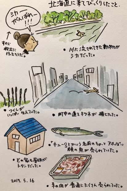 北海道でびっくりしたこと_f0072976_23380424.jpeg
