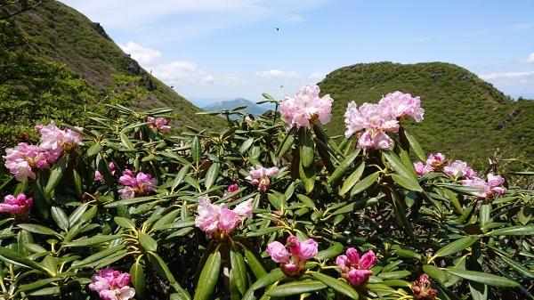 三俣山登山_e0262382_21555615.jpg