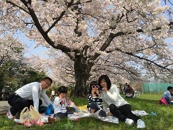 平成最後のハシゴ花見 第1弾〜♪_e0123286_16292827.jpg