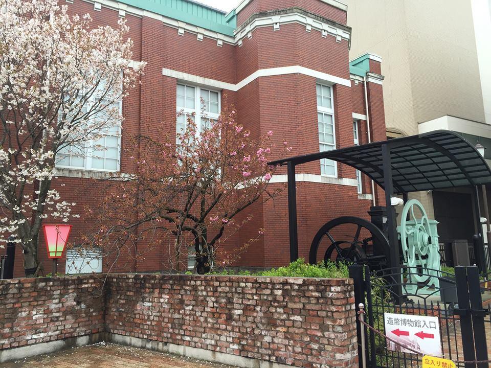 ぼっち花見 造幣局桜の通り抜け〜♪_e0123286_17384649.jpg