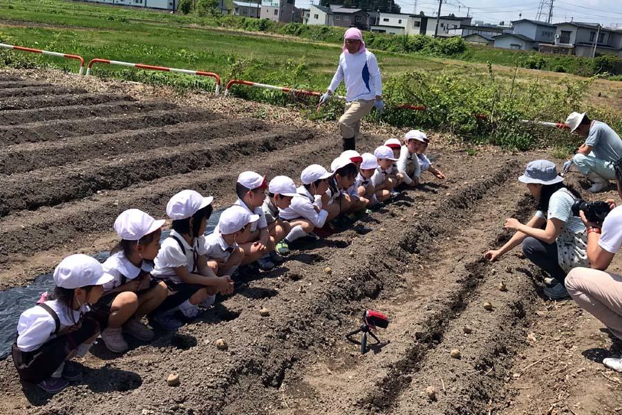 ジャガイモの種イモ植えを行いました。_d0353789_14013326.jpg