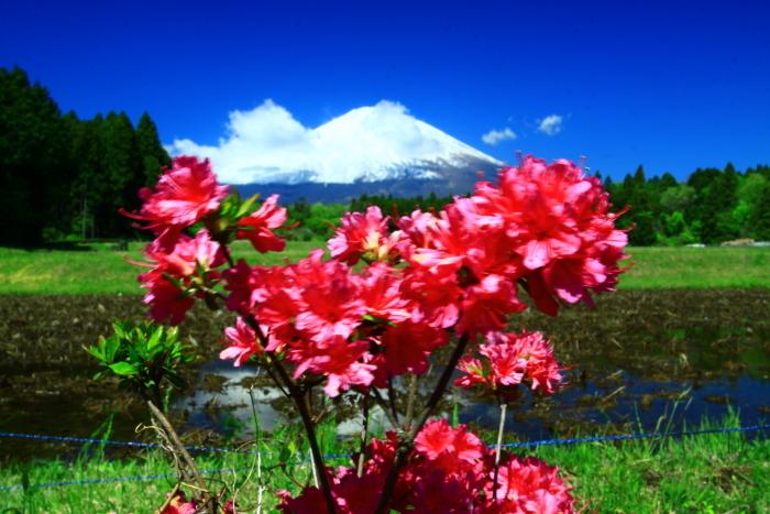 令和元年5月の富士(13)御殿場の富士_e0344396_18291266.jpg
