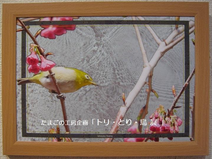 たまごの工房企画「トリ・とり・鳥 展」 その4_e0134502_17472000.jpg