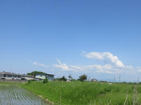 夏日の空.くーねこ脚湯の見学_a0203003_22144203.jpg