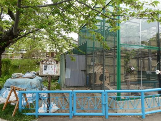 函館公園ニュース  5月17日(金)_e0145841_17120122.jpg
