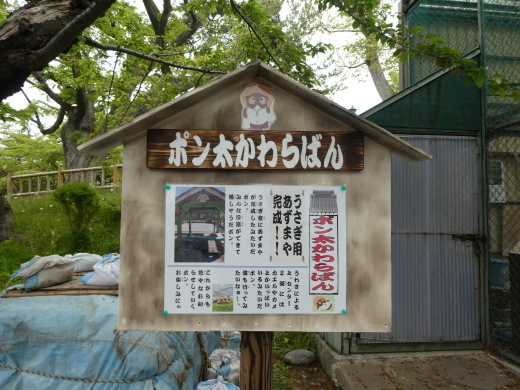 函館公園ニュース  5月17日(金)_e0145841_17120650.jpg
