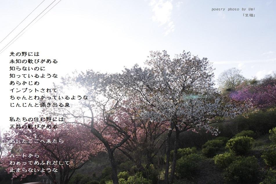 f0351844_16541944.jpg