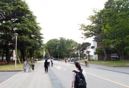 鳥取大学さんへ.....良かった〜今日の撮影は........._b0194185_18575998.jpg