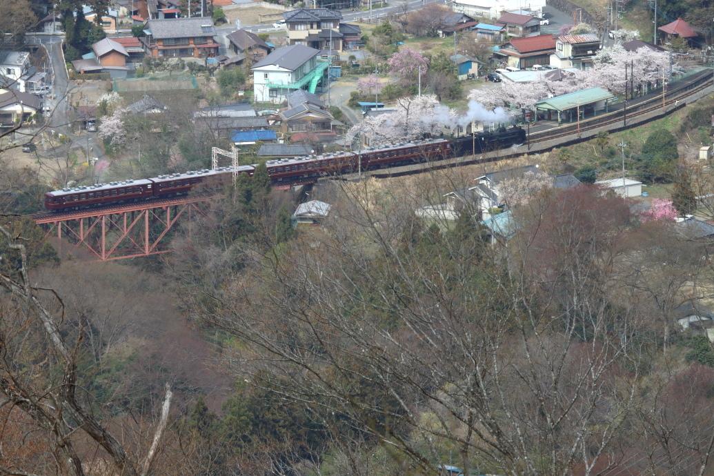 圧倒的桜。平成FINAL(2) 桜咲く駅を通過する汽車_b0190710_18370622.jpg