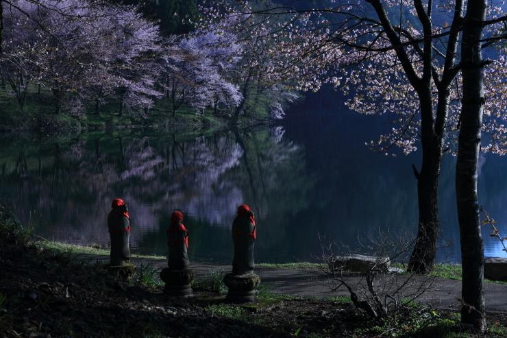 桜・響く 2019~中綱湖オオヤマザクラ~_d0349418_17400685.jpg