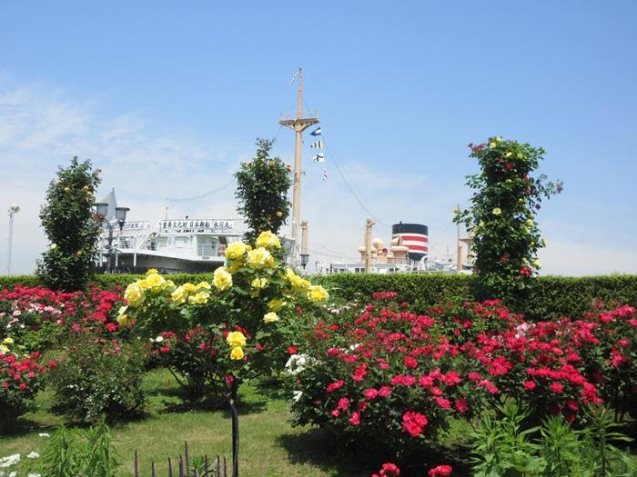 【モントレ横浜にランチに行ったら目の前でトライアスロンをやっていた】_b0009849_21392018.jpg