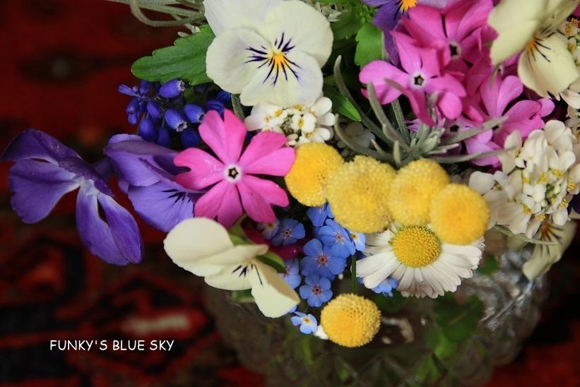 庭の小さなブーケ** (4月23日・28日)_c0145250_09415821.jpg