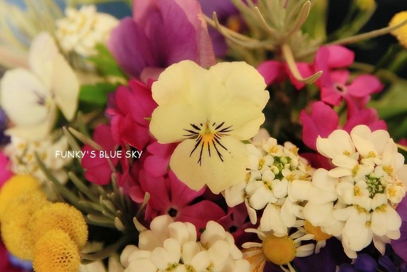 庭の小さなブーケ** (4月23日・28日)_c0145250_09420127.jpg