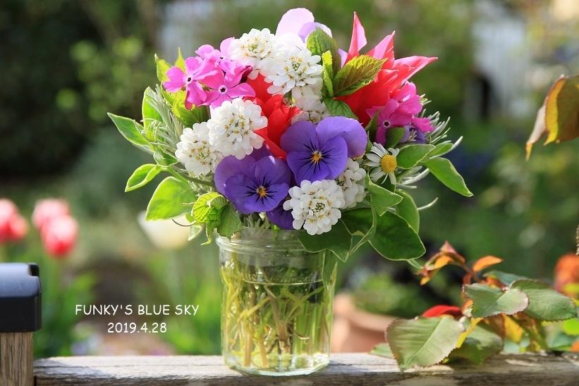 庭の小さなブーケ** (4月23日・28日)_c0145250_09424051.jpg
