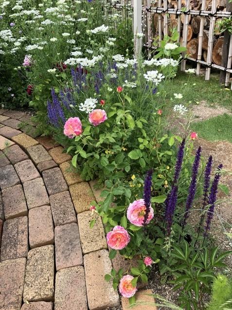 ガゼボを囲うバラや草花たち_a0243064_09055218.jpg