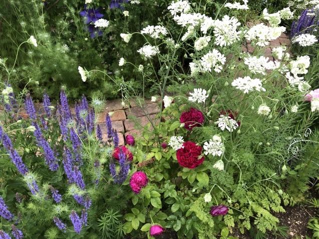 ガゼボを囲うバラや草花たち_a0243064_09103919.jpg