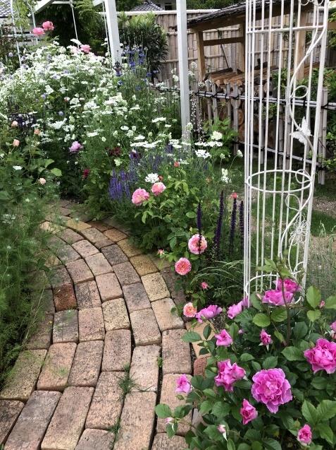 ガゼボを囲うバラや草花たち_a0243064_09164113.jpg