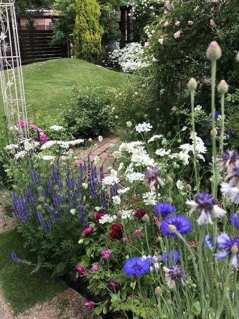 ガゼボを囲うバラや草花たち_a0243064_09172840.jpg