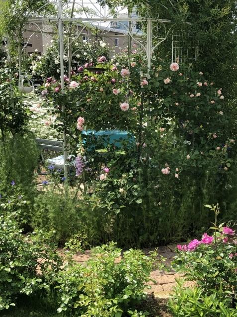 ガゼボを囲うバラや草花たち_a0243064_09181911.jpg
