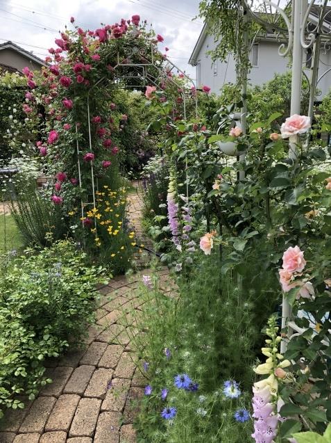 ガゼボを囲うバラや草花たち_a0243064_09242937.jpg