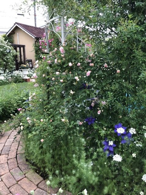 ガゼボを囲うバラや草花たち_a0243064_09261345.jpg
