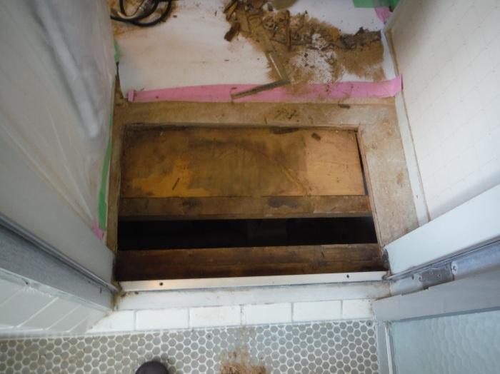 洗面所床の腐食補修 ~ 浴室ドア下が腐食_d0165368_16572702.jpg