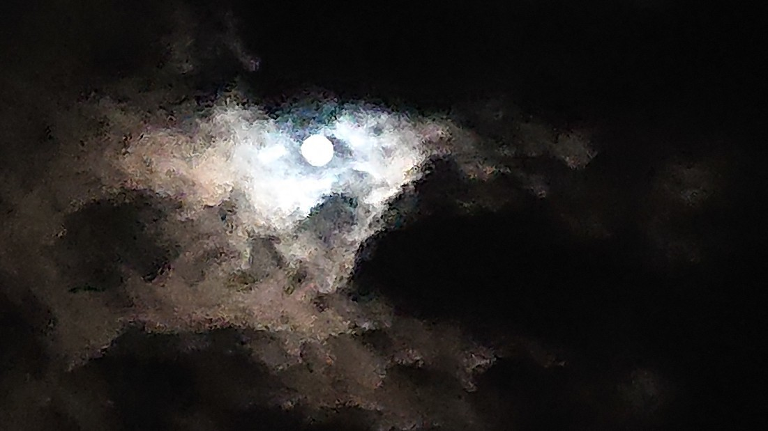 闇の中の光 ~虹と月と~ ***_e0290872_22381199.jpg