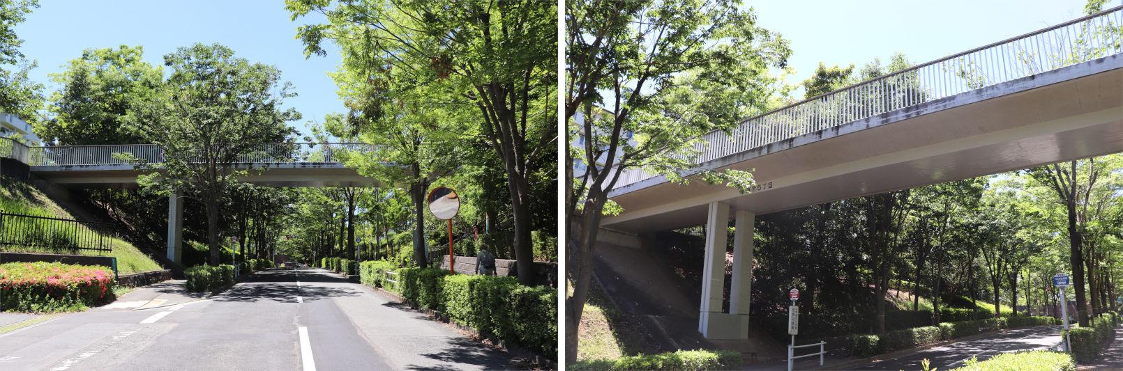 [多摩NTの橋ぜんぶ撮影PJ] No.97~100 多摩センター駅南側の橋_a0332275_16584706.jpg
