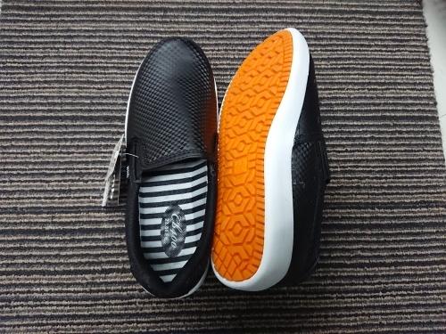 ワークマンの、滑りにくい靴_c0100865_08351965.jpg