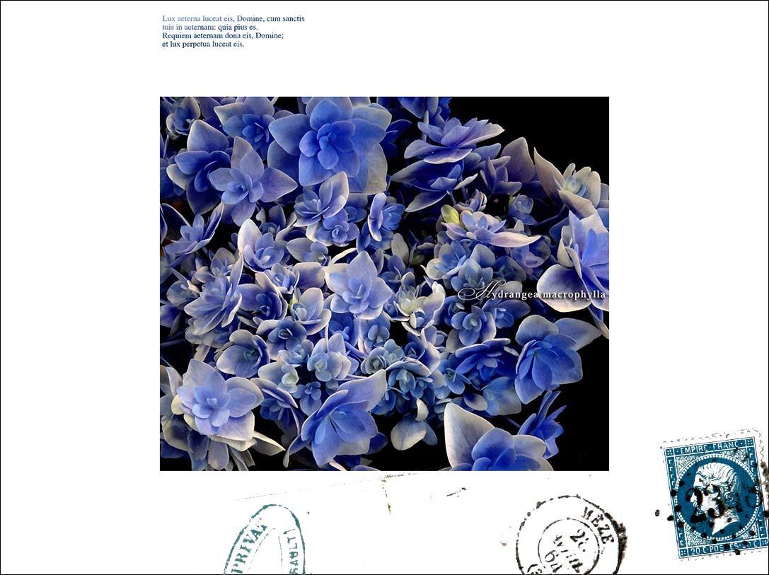 f0198771_23535352.jpg
