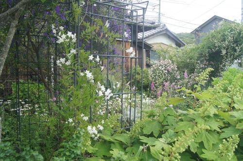 5月オープンガーデン終了_e0181373_21351475.jpg
