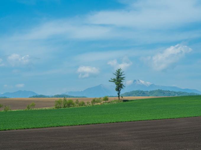 5月お気に入りの風景~残雪の日高山脈と新緑の丘陵地~_f0276498_18263181.jpg