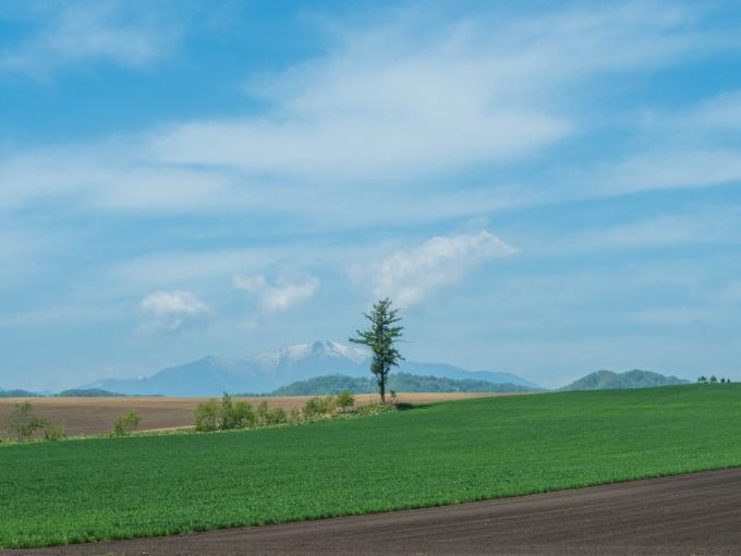 5月お気に入りの風景~残雪の日高山脈と新緑の丘陵地~_f0276498_18364284.jpg