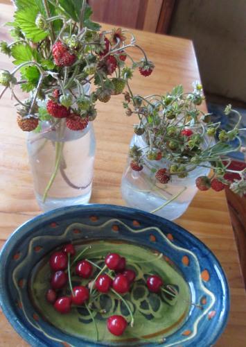 イチゴ真っ盛り、サクランボもちょっとだけ。_e0341401_00380830.jpg