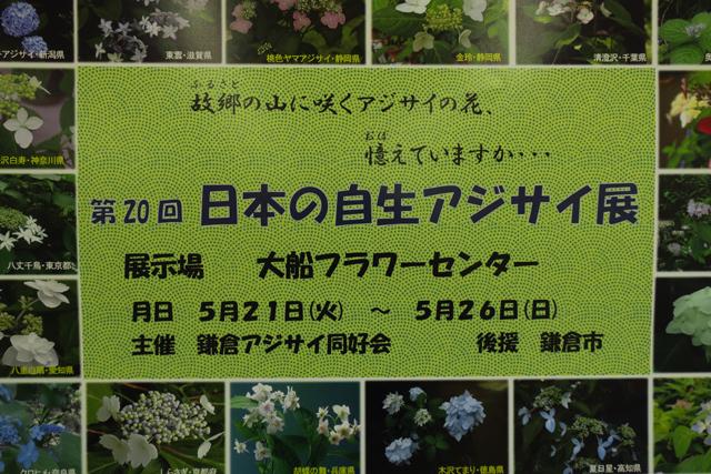 f0126932_20171960.jpg
