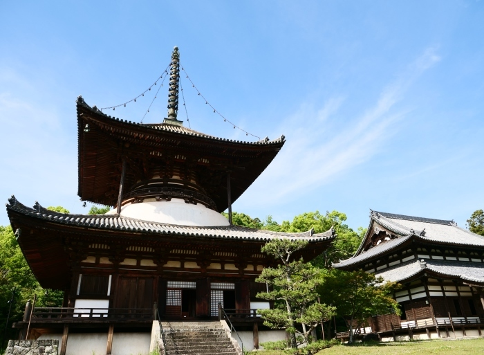 5月8日、みどりが美しい根来寺へ行きました。  2019-05-24 00:00_b0093754_21282810.jpg