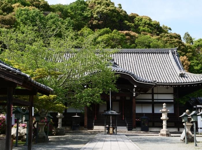 5月8日、みどりが美しい根来寺へ行きました。  2019-05-24 00:00_b0093754_21293628.jpg