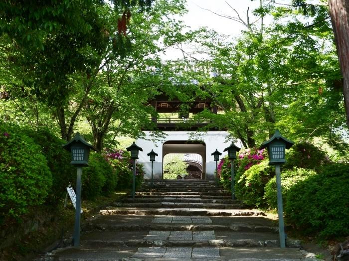5月8日、みどりが美しい根来寺へ行きました。  2019-05-24 00:00_b0093754_21303288.jpg