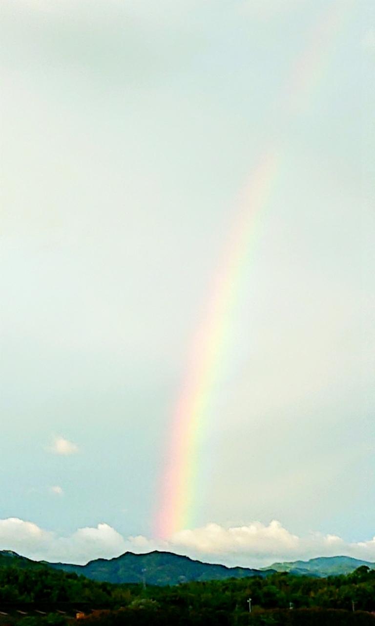 闇の中の光 ~虹と月と~ ***_e0290872_15094030.jpg