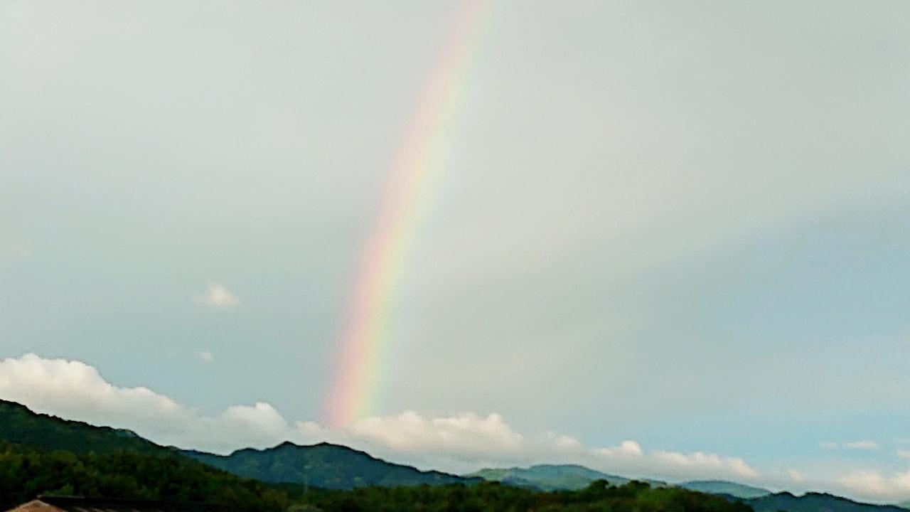 闇の中の光 ~虹と月と~ ***_e0290872_15095608.jpg